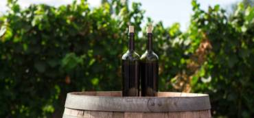 Report vino Italia ottobre 2020